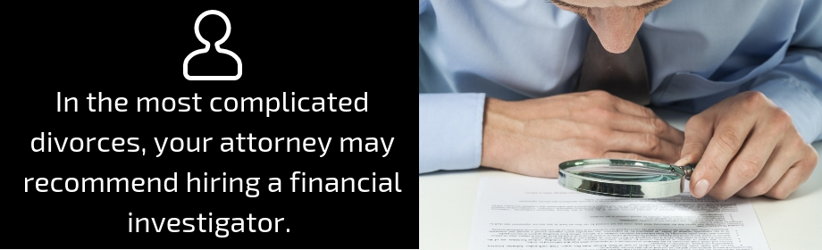 financial investigator